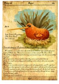 the-bean-bird